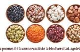 JORNADA D'INTERCANVI DE LLAVORS, EXPOSICIÓ DE FLORS I PLANTES COMESTIBLES I ASSEMBLEA ANUAL DE LLAVORS D'ACÍ