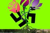 """Concentración pacifica """"Orriols libre de odio"""""""