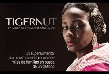 Proyeccion documental en Pedreguer: