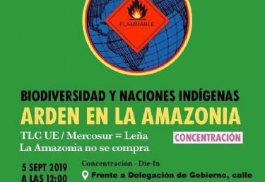 Concentración DÍA GLOBAL DE ACCIÓN POR LA AMAZONÍA