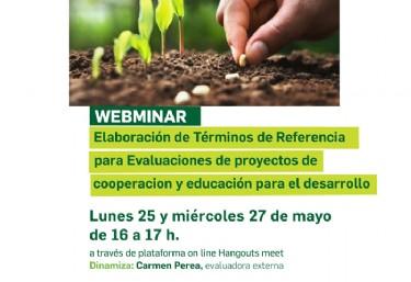 WEBMINAR - Elaboración de términos de referencia para Evaluaciones de proyectos de cooperacion internacional y educación para el desarrollo