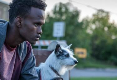 5 películas africanas sobre migraciones
