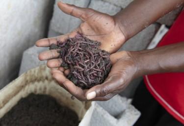 Oxfam Intermón denuncia que 40 niñas y niños mueren cada hora en el mundo a causa de la diarrea