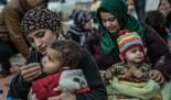 Oxfam Intermón denuncia que el Gobierno español pone muchas trabas a la agrupación familiar de refugiados