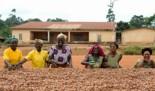 Compras públicas que garanticen los derechos laborales básicos y promuevan un comercio justo