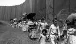 """Conferencia: Jamal Khader """"Setenta años la Nakba continúa"""""""
