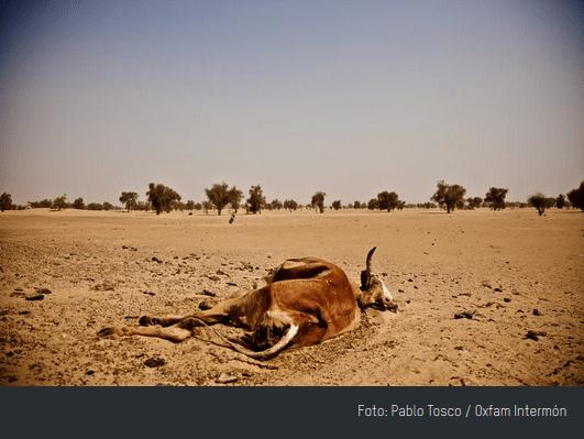 Imagen sobre el efecto del cambio climático en África