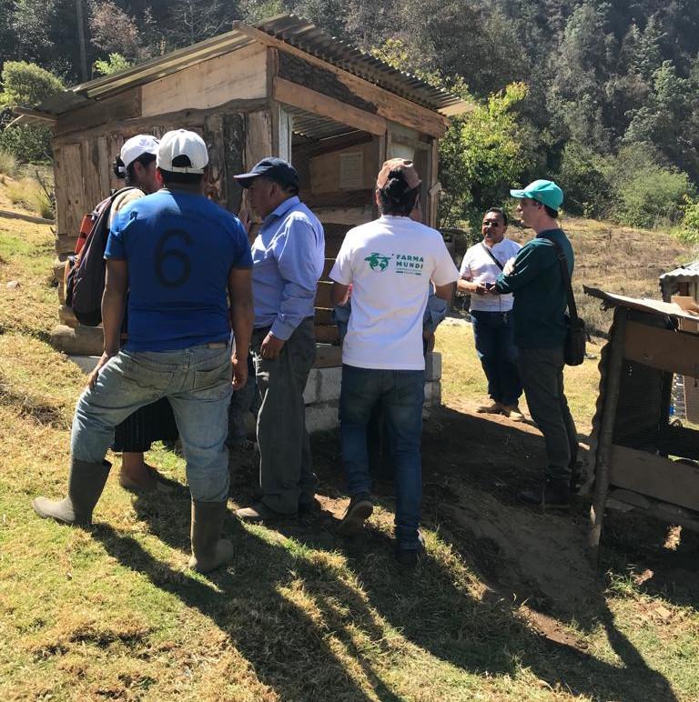 instalación de letrinas en guatemala por Farmamundi